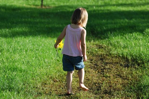 прогулки в детском саду