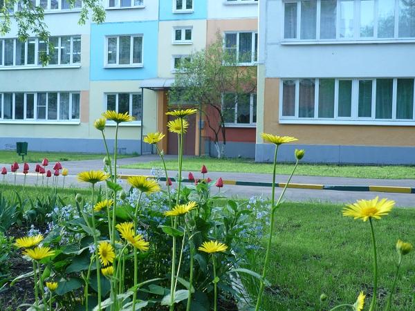 детский сад № 485