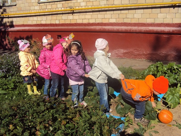 детский сад № 1464
