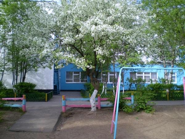 Детский сад № 1002