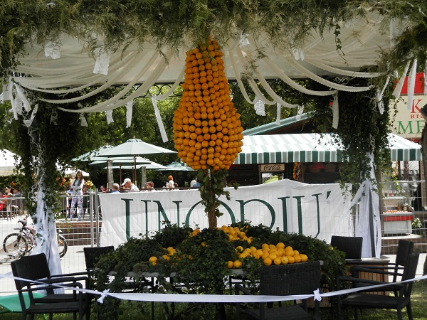 Фестиваль цветов 2013