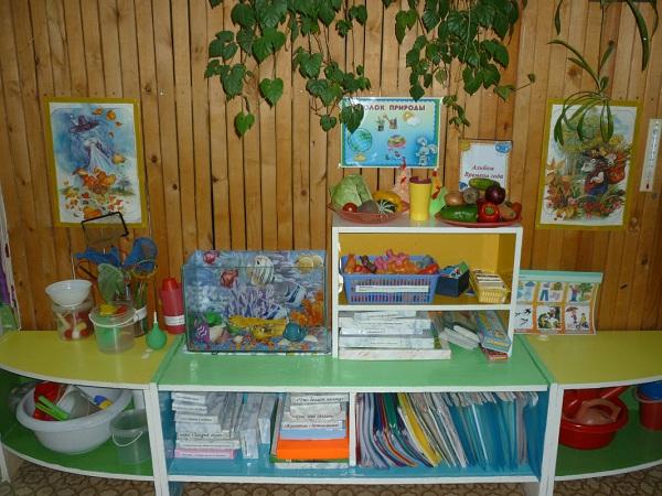 Уголок природы детском саду своими руками фото