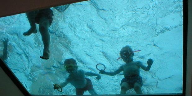 Должностная Инструкция Инструктора По Плаванию В Доу - фото 10