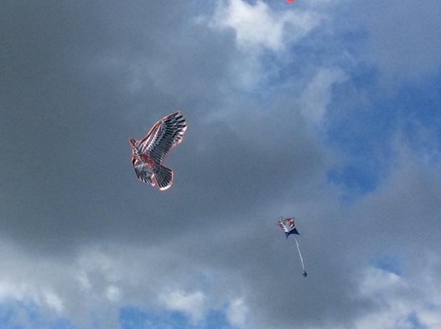 праздник воздушных змеев