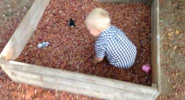 песочница из фасоли