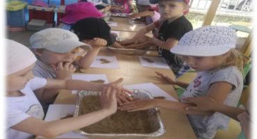 Опытно – экспериментальная деятельность «Песок» в средней группе « Звездочка»